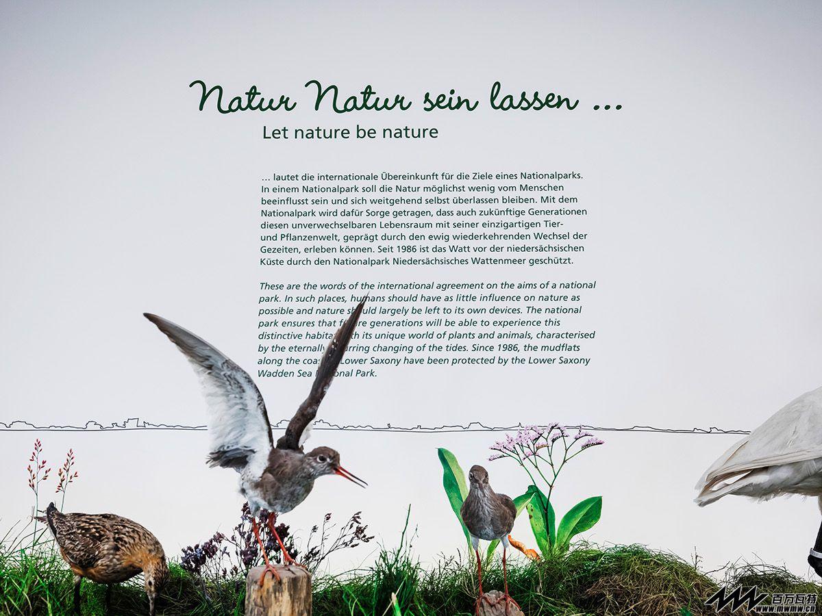 国外海洋自然主题展厅赏析