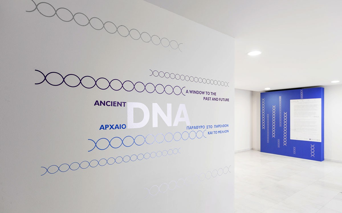 Ancient DNA展厅