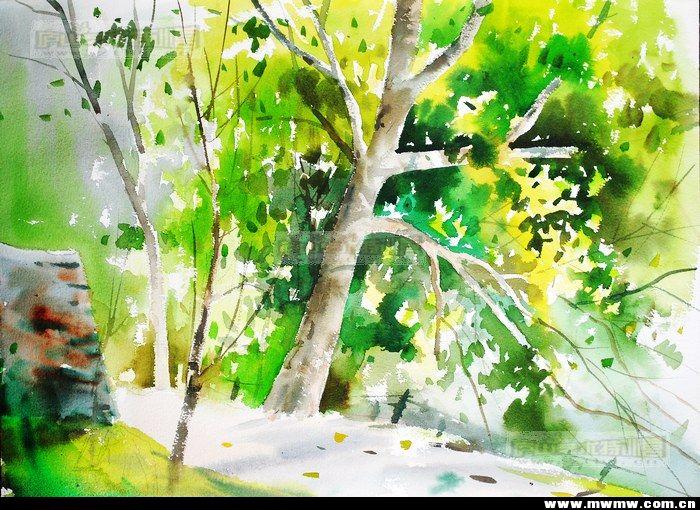 2011年寒期庐山手绘特训营与您相约在冬季!