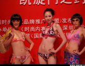 第四届深圳国际品牌内衣展览会